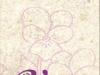 violeta-retiro